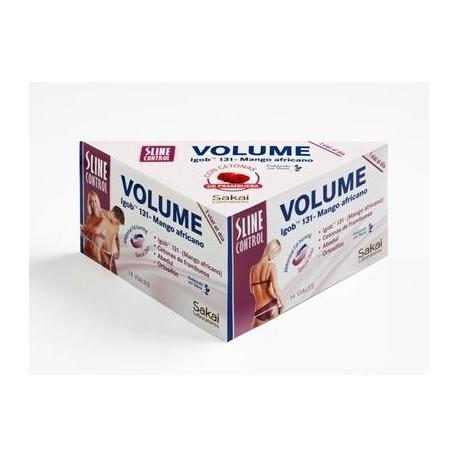 Sline Control Volume