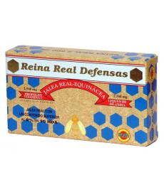 Reina Real Defensas
